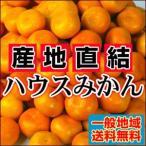 橘子 - 絶品!夏こそハウスみかん愛媛産 訳ありハウスみかん2kg【送料無料】