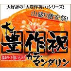 橘子 - 大豊作祝いのカラ・マンダリン10kg【送料無料】訳あり