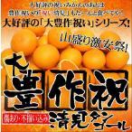 大豊作祝い清見タンゴール10kg【送料無料】訳あり・ご自宅用