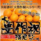 大豊作祝い清見タンゴール5kg【送料無料】訳あり・ご自宅用