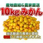 柑橘類 - 最安値に挑戦!訳ありみかん10kg 温州 【送料無料】訳あり