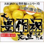 大豊作祝いの文旦4〜5kg【送料無料】