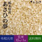 米 10kg お米 玄米 新米 あさひの夢 令和元年 栃木県産 送料無料(北海道・九州+300円)