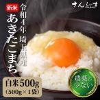 ポイント消化 送料無料 お米 あきたこまち 白米 新米 4合600g 29年茨城県産 お試しセット