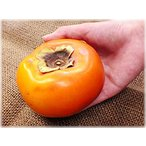 ●完売御礼●富有柿・通常品約3.2kg【送料無料】