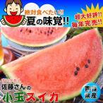 すいか名人 佐藤さんの小玉スイカ約5kg 送料無料 青森県産西瓜