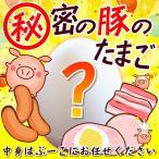 【2個セット+1個オマケ付】秘密の豚のたまご 送料無料 冷凍 食品 惣菜 ハム ギフト