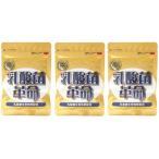 3袋セット 乳酸菌革命 330mg×62粒 健康いきいき倶楽部 有胞子性乳酸菌 送料無料