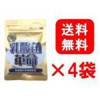 4袋セット 乳酸菌革命 330mg×62粒 健康いきいき倶楽部 有胞子性乳酸菌 送料無料
