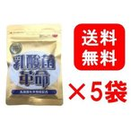 5袋セット 乳酸菌革命 330mg×62粒 健康いきいき倶楽部 有胞子性乳酸菌 送料無料