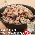 雑穀米 グルテンフリー 厳選国産 十五穀米 2.25kg (450g×5袋) 送料無料 無添加