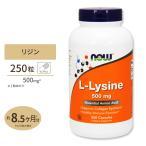 L-リジン 500mg 250カプセル NOW Foods