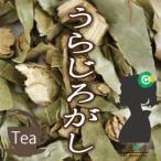 排石茶(はいせきちゃ / ウラジロガシ / うらじろがし)25g メール便送料無料