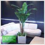 人工観葉植物 光触媒 バナナツリー 205cm 造花 お祝い 贈り物 プレゼント ギフト 室内インテリア バナナの木 果樹木 フェイクグリーン インテ