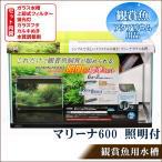 Yahoo!バラエティ雑貨サプライズワールド観賞魚飼育セット マリーナ600 照明付標準セット 60Hz