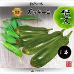 カボチャ ズッキーニ1本 / 韓国野菜類 /