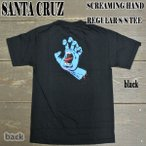 SANTA CRUZ/サンタクルズ SCREAMING HAND REGULAR S/S TEE BLACK メンズ Tシャツ 17 男性用