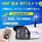 動体検知!IP66防水!64GBで100日間録画!多数同時接続可!