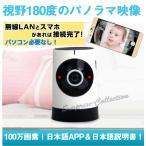 【レターパック送料無料】iPhone・Androidスマホ対応/Wifiネットワークカメラ! /ベビー・ペット・防犯監視カメラ!動体検知!赤外線!