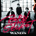 CD/WANDS/BURN THE SECRET (通常盤)