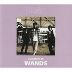CD/WANDS/コンプリート・オブ WANDS at the BEING studio