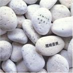 Yahoo!サプライズweb【大特価セール】 CD/尾崎亜美/アミズ・ベスト