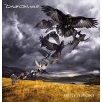 CD/デヴィッド・ギルモア/飛翔 (Blu-specCD2) (解説歌詞対訳付) (通常Standard Version盤)