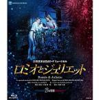 【取寄商品】BD/趣味教養/三井住友VISAカード ミュージカル 『ロミオとジュリエット』 B日程版(Blu-ray)