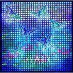 CD/AYABIE/流星 (DVD付 (「Lilia」Music Clip収録)) (初回限定盤B)