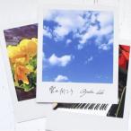 CD/井手綾香/雲の向こう (CD+DVD) (初回生産限定盤)