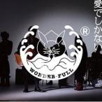 【取寄商品】CD/WONDER-FULL/愛でしかない