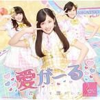 CD/Rev.from DVL/愛がーる/君がいて僕がいた (Type-B/アイカツコラボver.)
