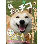 中古その他DVD 柴犬のチコ