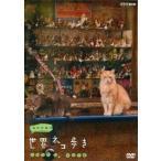 中古その他DVD 岩合光昭の世界ネコ歩き ソレントとカプリ島