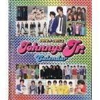 中古カレンダー ジャニーズJr.2010年度yearカレンダー