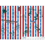 中古クリアファイル 第7部 スティール・ボール・ラン A4クリアファイル 「ジョジョの奇妙な冒険」 ローソン キャ