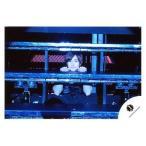 中古生写真(ジャニーズ) Mr.King vs Mr.Prince/平野紫耀/横型・上半身・衣装黒・両手台・隙間覗き・体正面/公式生写真