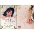 中古コレクションカード(女性) SPECIAL 06 : 杉原杏璃/スペシャルカード(金箔押しサイン入り)/杉原杏璃 〜LAST