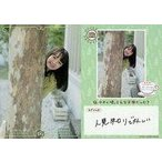 中古コレクションカード(女性) VACC-02/OO-044-N : 尾崎由香/VACC-02/OO-044-N/ノー