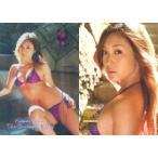 中古コレクションカード(女性) Natsuko Tatsumi 109 : 辰巳奈都子/スペシャルカード(ミラーカード