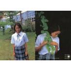 中古コレクションカード(女性) 004 : 市川由衣/レギュラーカード/Conceptual Collection Card 市川由衣