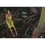 中古コレクションカード(女性) 027 : 市川由衣/レギュラーカード/Conceptual Collection Card 市川由衣