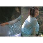 中古コレクションカード(女性) 070 : 市川由衣/レギュラーカード/Conceptual Collection Card 市川由衣