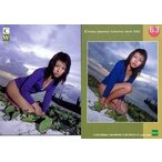 中古コレクションカード(女性) No.63 : 若槻千夏/レギュラーカード/若槻千夏 コレクションカード 2002