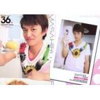 中古コレクションカード(男性) Regular 36 : 井上正大/レギュラーカード/ザ・テレビジョン HOMME