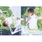 中古コレクションカード(女性) 068 : 釈由美子/レギュラーカード/YUMIKO SHAKU TRADING CARD 2001