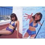 中古コレクションカード(女性) Rg-25 : 杏さゆり/レギュラーカード/VISUAL PHOTOCARD COLLECTION 杏さゆり