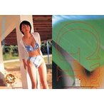 中古コレクションカード(女性) 010 : 酒井若菜/レギュラーカード/Young Sunday Harvest Collection 酒井