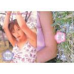 中古コレクションカード(女性) 058 : 酒井若菜/レギュラーカード/Young Sunday Harvest Collection 酒井