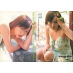 中古コレクションカード(女性) 069 : 酒井若菜/レギュラーカード/Young Sunday Harvest Collection 酒井